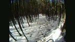 All Mountain Snow Run
