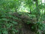 Path Gap #1