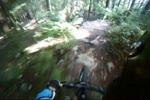 Randy's Trail