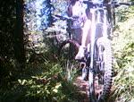 Hall Lake Trail (2)