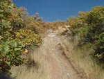 Quick line on Squaw Peak
