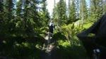 New School trail