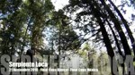 Video: Serpiente Loca
