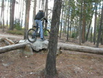 Messing Around At The Canmore MTB Skills Park!