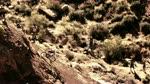 Red Bull Rampage 2010 Finals