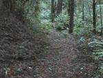 Rowdy Creek Trail Building Timelapse