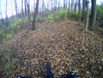 My Little Backwoods Run