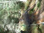 martin rutherford dunkeld SDA crash
