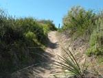 Vista Trail 1-29-11