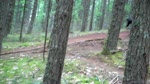 Hardtail Down 'Drop Out'