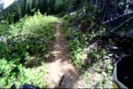 Fernie Bike Park Trails (Part 2)
