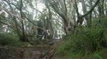 Austrailan National MTB Series. Mt Buller 6/2/2011