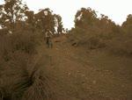 Goat Farm Dh Track Thingy