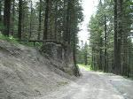road gap at swansee