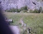 warton quarry