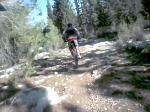 Weekend in Ben-Shemen and Karmey-Yosef Forests