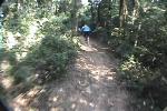 Bike Joe DH Saracura