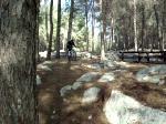 a 6 feet drop in Ben Shemen Forest