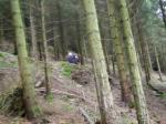 Llandegla Black Runs