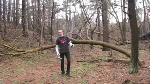 choppin wood