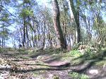 Mountain Biking at Blackamoor Sheffield