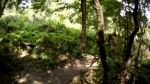 Vortex Red Trails Compiled @ Santos MTB Park