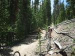 TNT Trail