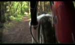 Frame Cam - Wentwood DH