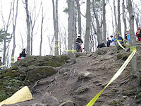 kelso ocup dh1