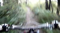 Chaparral Trail - Joaquin Miller Park