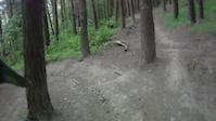 Innerleithen - Deer Hunter DH Track