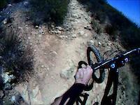 Mule Deer Trail 07-11-2011