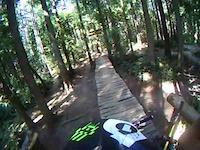 Semper Dirticus - Tree crash