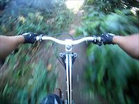 Rasta Trail!