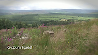 Gisburn Forest - The new Hope Trail