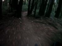 Unnamed fun trail?