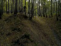 Chill ride in Trupi Forest