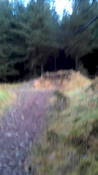 AE Shredder Road Gap