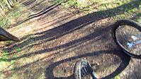 Greno woods