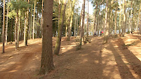 Chicksands 4X