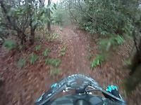 Wilson's Creek downhill