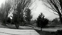Cecelia Ravine Park