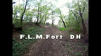 F.L.M. Fort DH