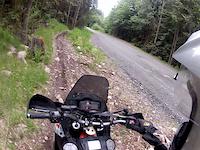 chipmunk creek trail 2