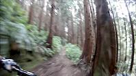 16 Seconds Trail