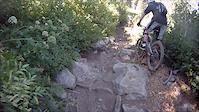 Butcher Creek Trail - D, Downieville CA