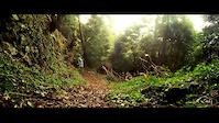 We Are Nature- Pedra Torta Teaser