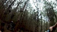 swinley forest full moon!