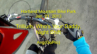 2013_01_21 Hartland Trillium WYD