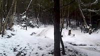 Snowy Swinley